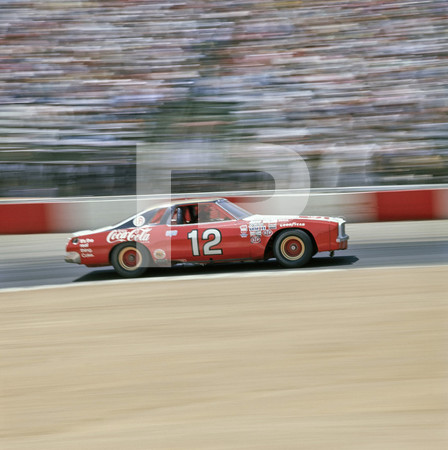 1974 NASCAR Winston West Series Tuborg 400 - Riverside