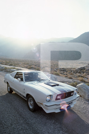 1975 Ford Mustang Cobra II Exterior and Interior Photos